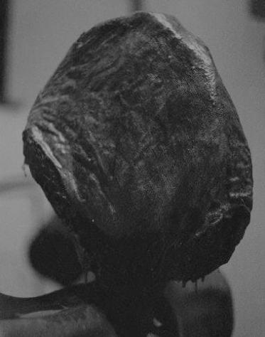 Rostros, escultura de Juan Manuel Alvarez Romero, Mané